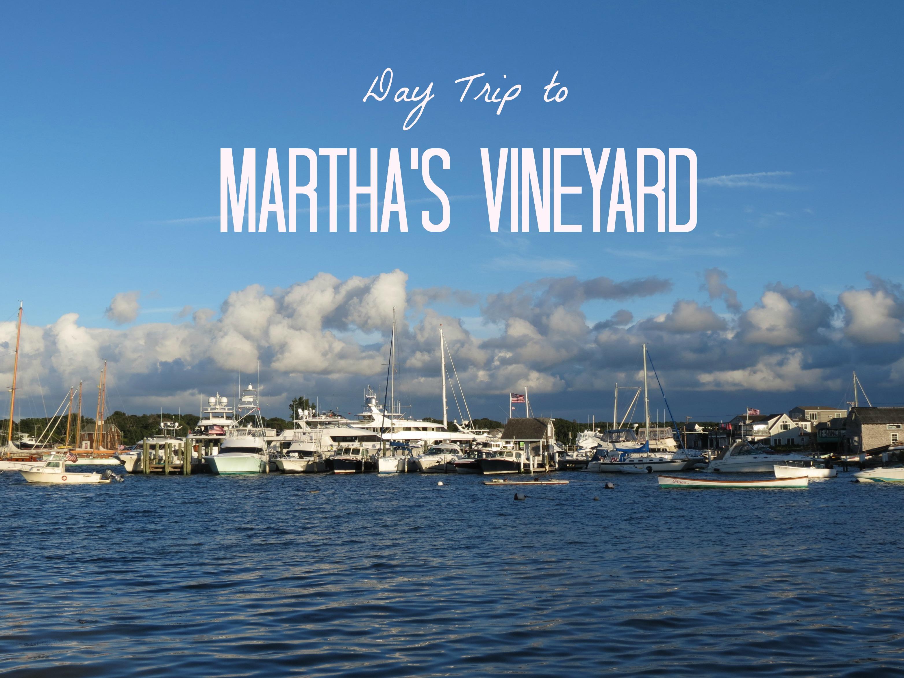Biking Martha's Vineyard – oliveoloveblog