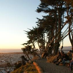 SF Wanderings: Lands End & Grand View Park