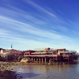 Monterey & Carmel Travel Guide