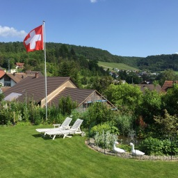 Swiss Diaries I: To Switzerland, With Love