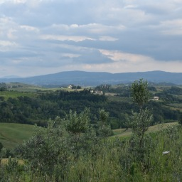 Italy IV: Northern Tuscany Photo Diary