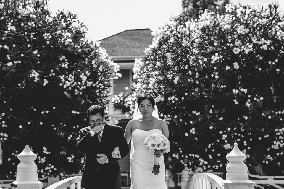 wedding-dhp-105