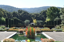 Fall Visit to Filoli