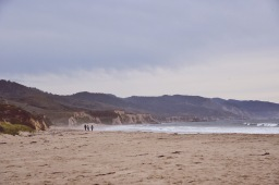 Exploring Point Reyes in the Winter