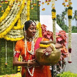 India Part I: An Epic Indian Wedding